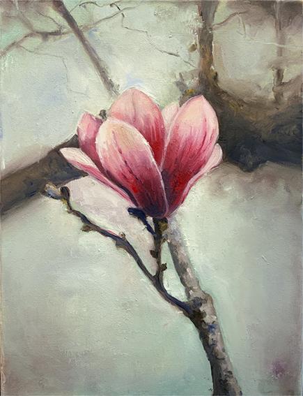 Malkurse Freiburg, Blumen, Magnolie, Gemälde
